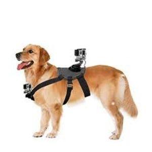 GoPro Dog Mount (Fetch Dog Harness) for sale